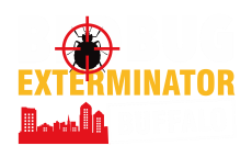 Reliable Bed Bug Exterminator in Buffalo NY